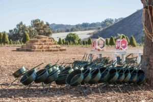 large and small stands available for sale at Hagle Christmas Tree Farm