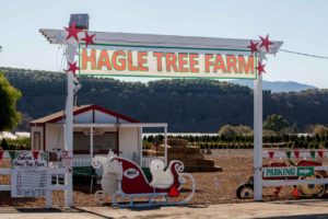 front entrance of Hagle Christmas Tree Farm