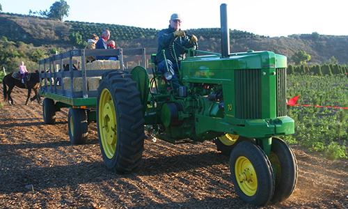 Tractor Hay Rides at Hagle Tree Farm